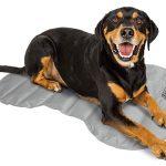 Coleman Pressure Activated Comfort Cooling Gel Pet Pad Mat