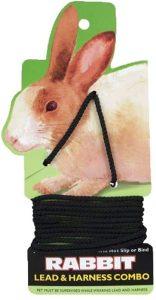 Coastal Rabbit Harness